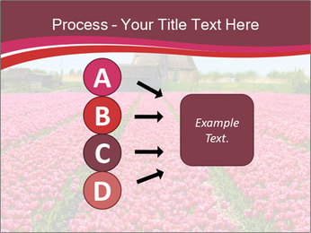 Rows of pink tulips PowerPoint Templates - Slide 94