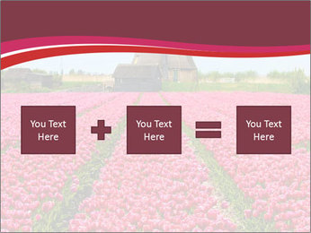 Rows of pink tulips PowerPoint Templates - Slide 95