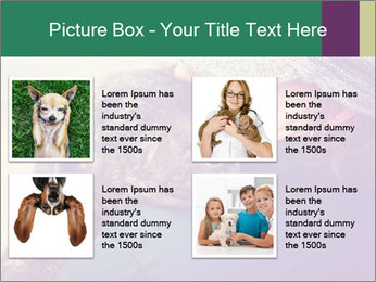 A girl holding a pit bull PowerPoint Template - Slide 14