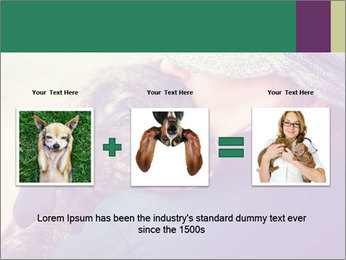 A girl holding a pit bull PowerPoint Template - Slide 22