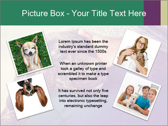 A girl holding a pit bull PowerPoint Template - Slide 24