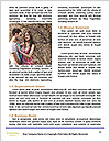0000090735 Word Template - Page 4