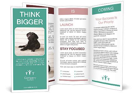 0000090737 Brochure Templates