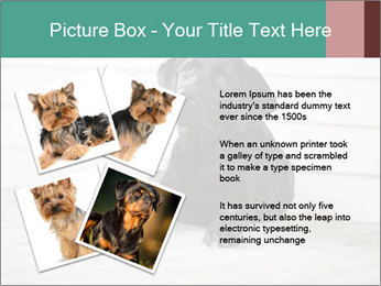 Adorable black lab PowerPoint Templates - Slide 23