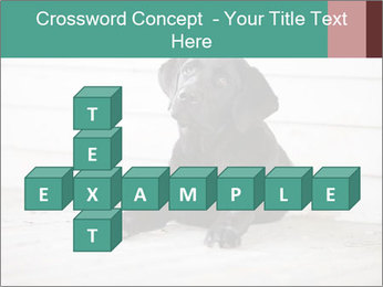 Adorable black lab PowerPoint Templates - Slide 82