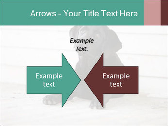 Adorable black lab PowerPoint Templates - Slide 90