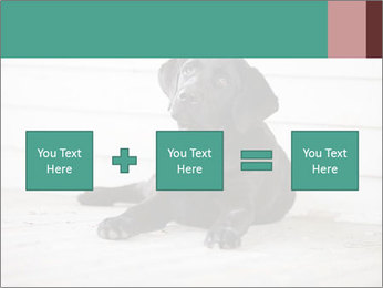 Adorable black lab PowerPoint Templates - Slide 95