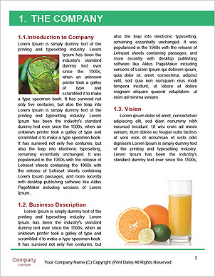 0000090741 Word Template - Page 3