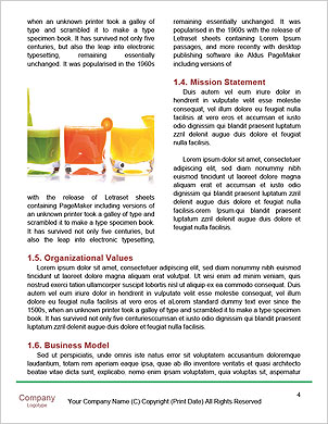 0000090741 Word Template - Page 4