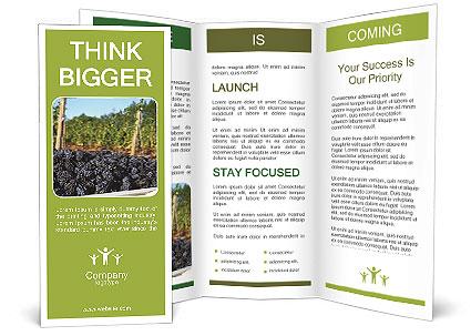 0000090764 Brochure Template