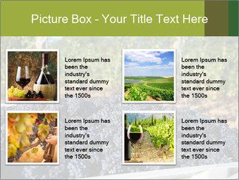 Pinot Noir grapes PowerPoint Templates - Slide 14