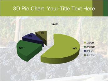 Pinot Noir grapes PowerPoint Templates - Slide 35
