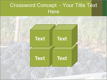 Pinot Noir grapes PowerPoint Templates - Slide 39