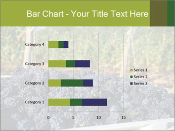 Pinot Noir grapes PowerPoint Templates - Slide 52