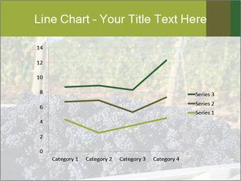 Pinot Noir grapes PowerPoint Templates - Slide 54