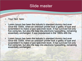 Japan PowerPoint Template - Slide 2