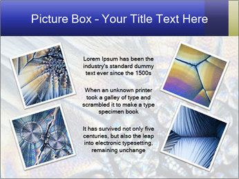 0000090767 PowerPoint Template - Slide 24