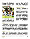 0000090770 Word Templates - Page 4
