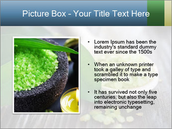 Spa PowerPoint Templates - Slide 13