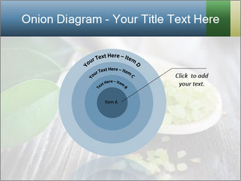Spa PowerPoint Templates - Slide 61