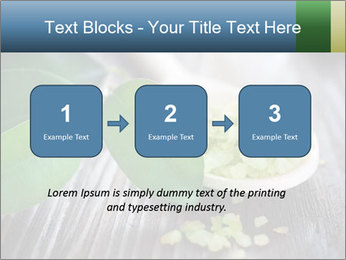 Spa PowerPoint Templates - Slide 71