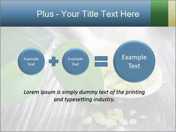 Spa PowerPoint Template - Slide 75