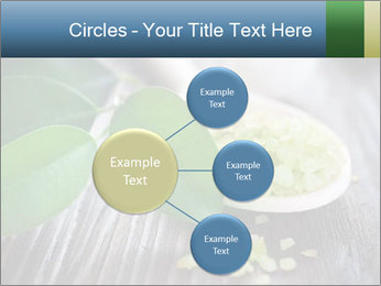 Spa PowerPoint Template - Slide 79