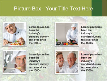 Man picking tomatoes PowerPoint Template - Slide 14