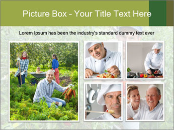 Man picking tomatoes PowerPoint Template - Slide 19