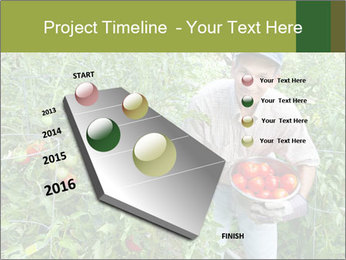Man picking tomatoes PowerPoint Template - Slide 26