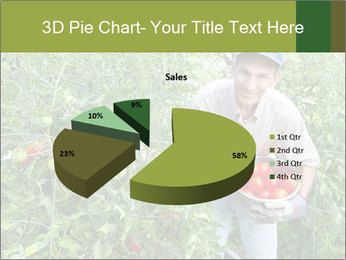 Man picking tomatoes PowerPoint Template - Slide 35