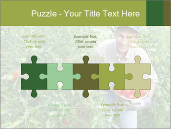 Man picking tomatoes PowerPoint Template - Slide 41