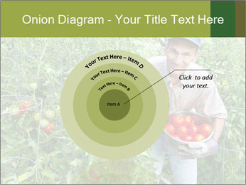 Man picking tomatoes PowerPoint Template - Slide 61