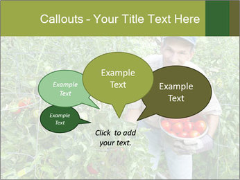 Man picking tomatoes PowerPoint Template - Slide 73