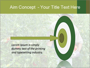 Man picking tomatoes PowerPoint Template - Slide 83