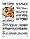 0000090792 Word Templates - Page 4