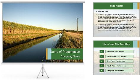 A sugar cane field PowerPoint Template