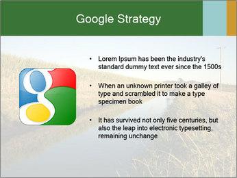 A sugar cane field PowerPoint Template - Slide 10