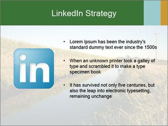 A sugar cane field PowerPoint Template - Slide 12