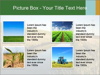 A sugar cane field PowerPoint Template - Slide 14