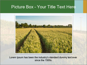 A sugar cane field PowerPoint Template - Slide 15