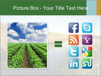 A sugar cane field PowerPoint Template - Slide 21