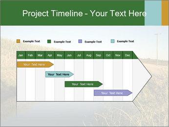A sugar cane field PowerPoint Template - Slide 25