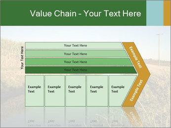 A sugar cane field PowerPoint Template - Slide 27