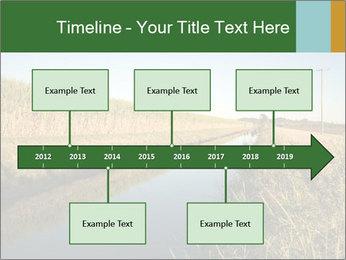 A sugar cane field PowerPoint Template - Slide 28