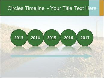 A sugar cane field PowerPoint Template - Slide 29