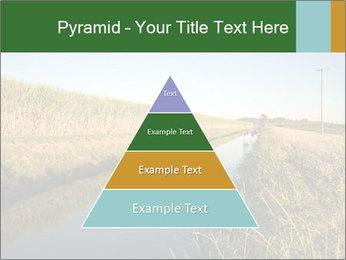 A sugar cane field PowerPoint Template - Slide 30