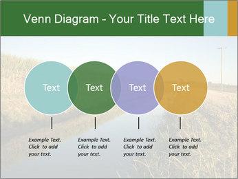 A sugar cane field PowerPoint Template - Slide 32