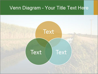 A sugar cane field PowerPoint Template - Slide 33