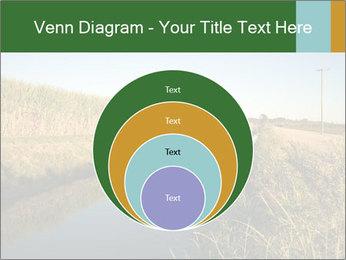 A sugar cane field PowerPoint Template - Slide 34